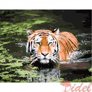 Картина по номерам Тигр в воде